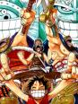 One piece, Arc Little Garden