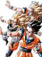 Quizz sur dragon ball ( dragon ball z et super ainsi que les oavs dragon ball )